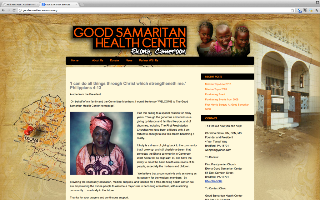 Website for African Health Clinic